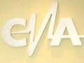 CNA va obliga posturile de radio si televiziune sa-si publice situatia financiar-contabila