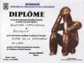 Protocol intre Guvernul Republicii Moldova si Guvernul Romaniei privind recunoasterea reciproca a diplomelor, certificatelor si titlurilor stiintifice