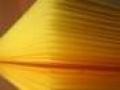 """T. Basescu: Cerere de reexaminare ref. Legea de modificare a Legii privind organizarea si functionarea Academiei de Stiinte Agricole si Silvice """"Gheorghe Ionescu-Sisesti"""""""