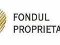 Fondul Proprietatea, funcţional complet în termen de 11-14 luni