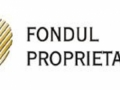 Guvernul mai aloca 10 milioane RON la Fondul Proprietatea