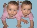 Proiect de modificare a legii adopţiilor